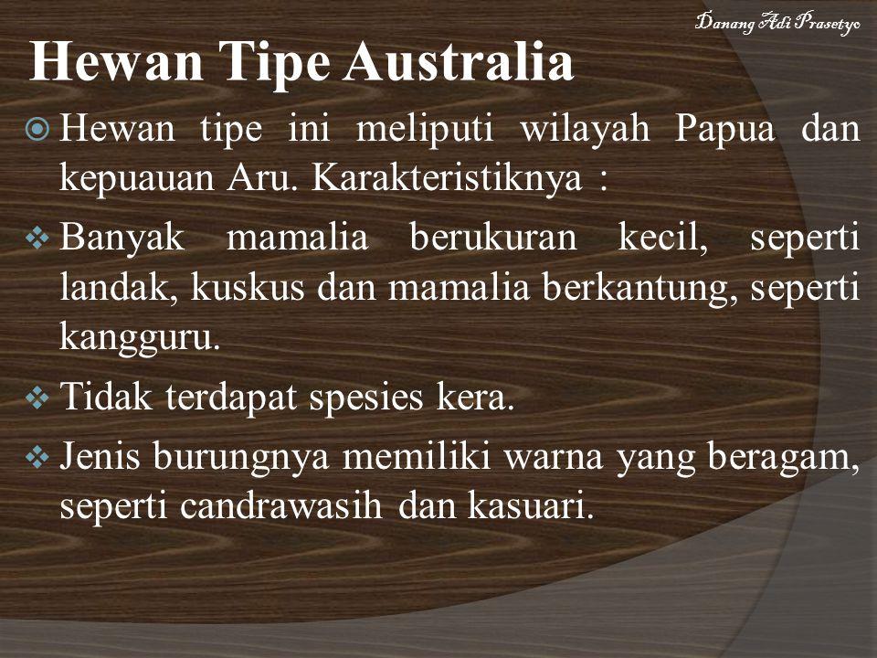 Danang Adi Prasetyo Hewan Tipe Australia. Hewan tipe ini meliputi wilayah Papua dan kepuauan Aru. Karakteristiknya :