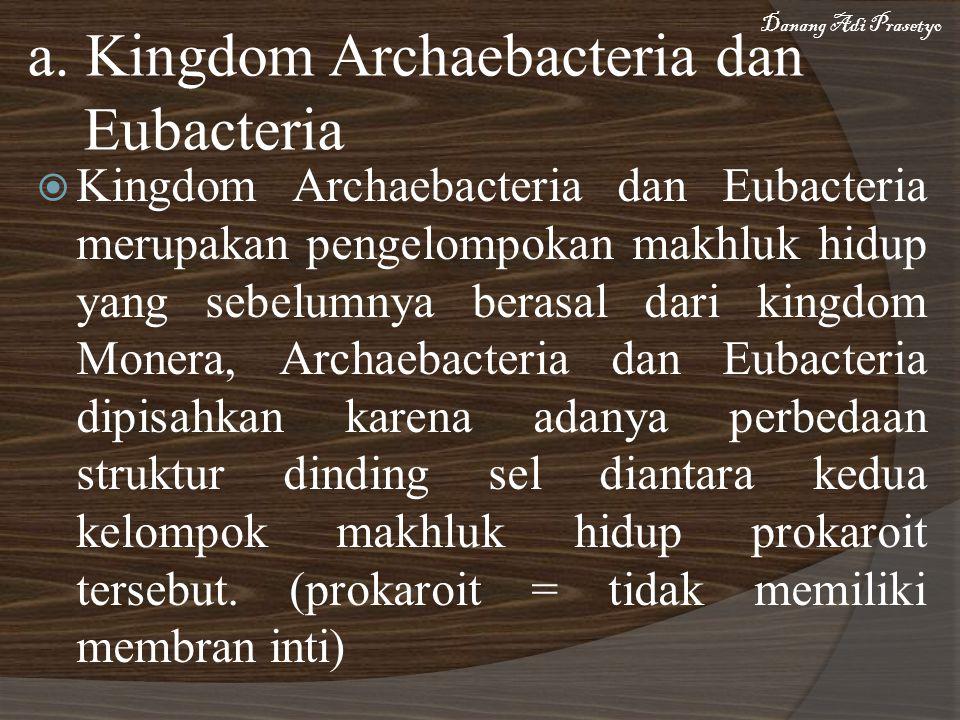 a. Kingdom Archaebacteria dan Eubacteria