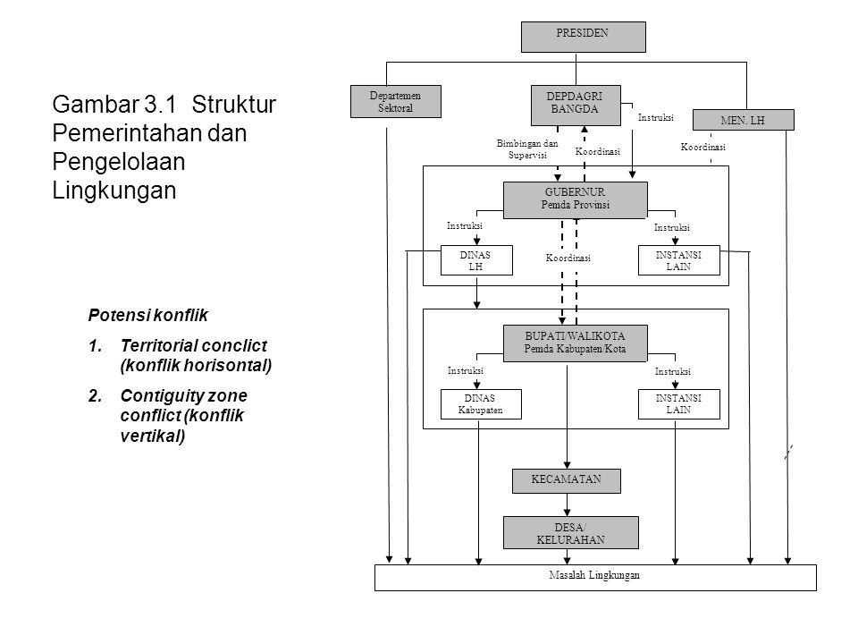 Gambar 3.1 Struktur Pemerintahan dan Pengelolaan Lingkungan