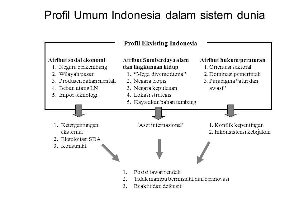 Profil Umum Indonesia dalam sistem dunia