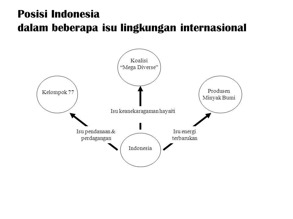 Posisi Indonesia dalam beberapa isu lingkungan internasional