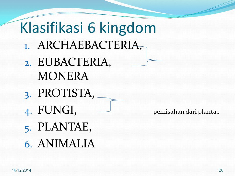 Klasifikasi 6 kingdom ARCHAEBACTERIA, EUBACTERIA, MONERA PROTISTA,