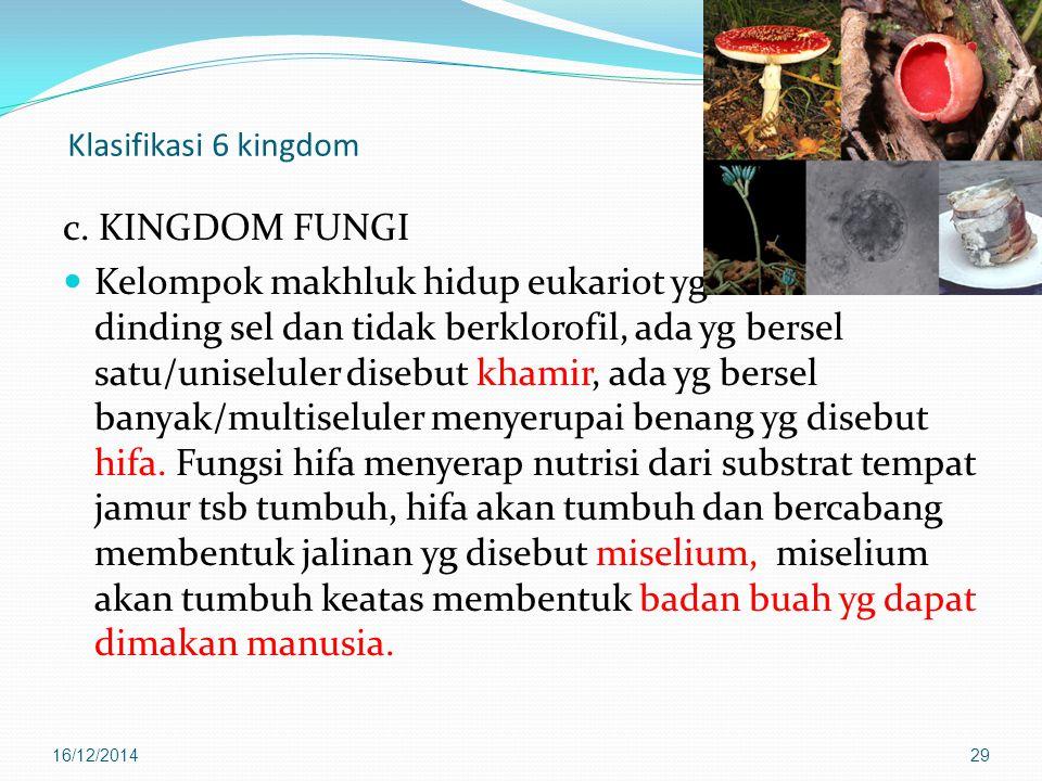 Klasifikasi 6 kingdom c. KINGDOM FUNGI.