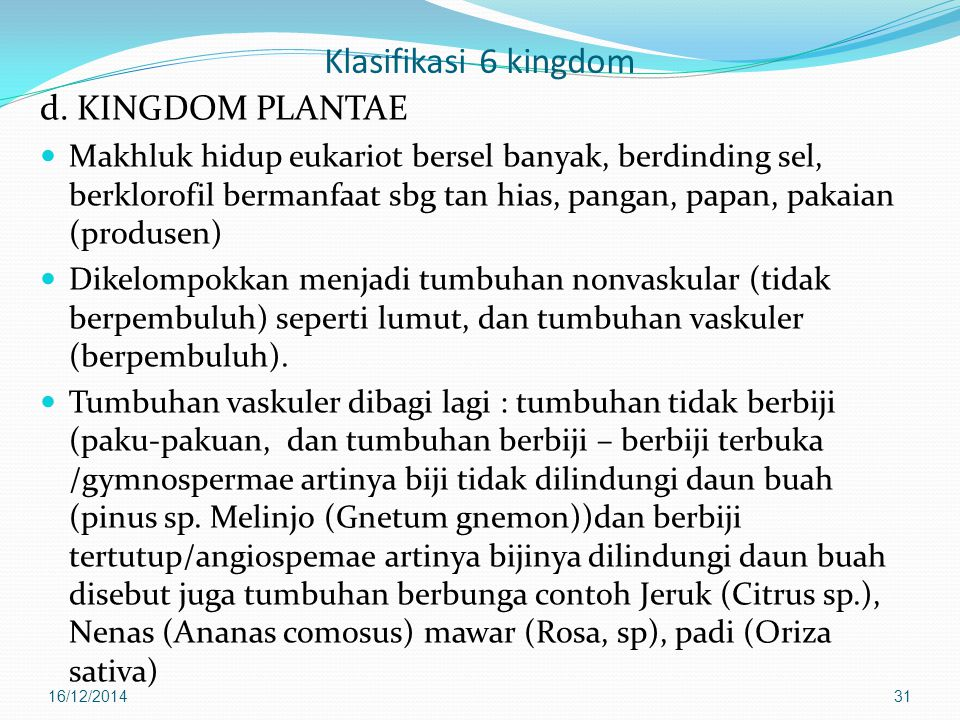Klasifikasi 6 kingdom d. KINGDOM PLANTAE