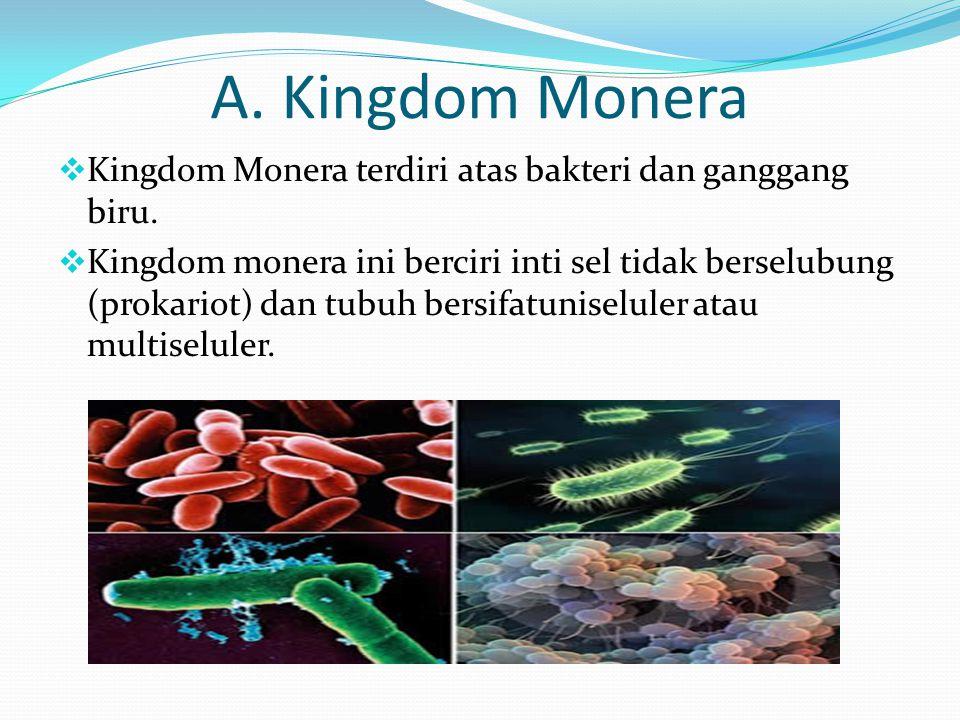 A. Kingdom Monera Kingdom Monera terdiri atas bakteri dan ganggang biru.