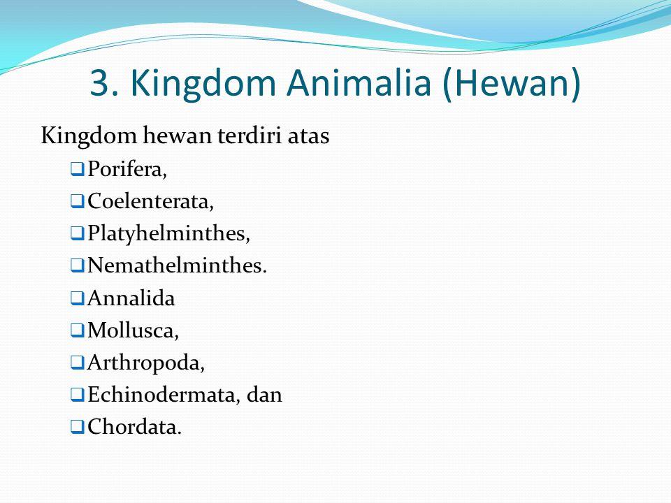 3. Kingdom Animalia (Hewan)