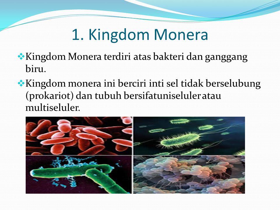 1. Kingdom Monera Kingdom Monera terdiri atas bakteri dan ganggang biru.