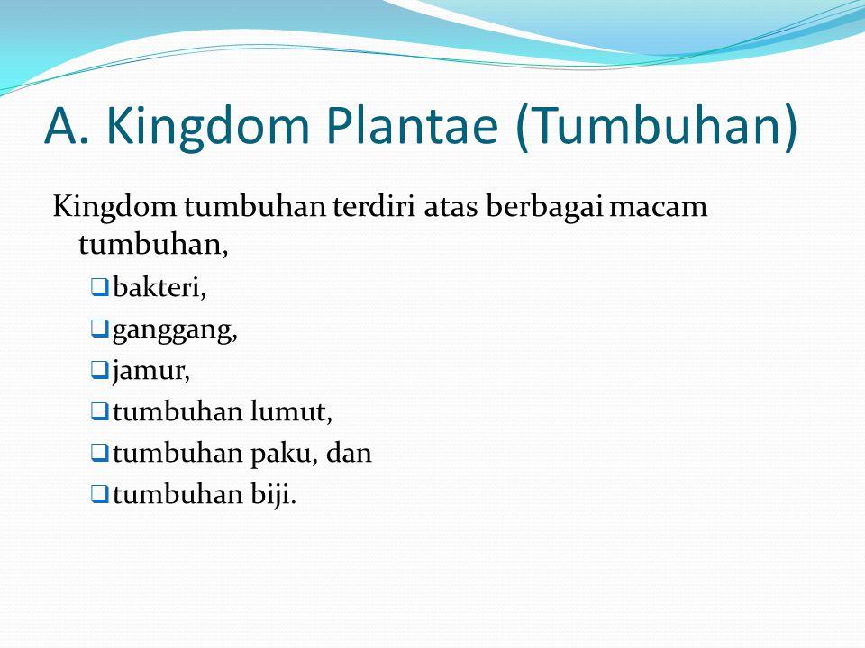 A. Kingdom Plantae (Tumbuhan)