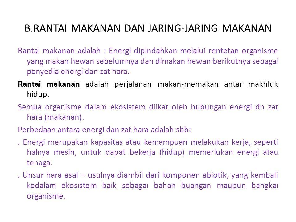 B.RANTAI MAKANAN DAN JARING-JARING MAKANAN