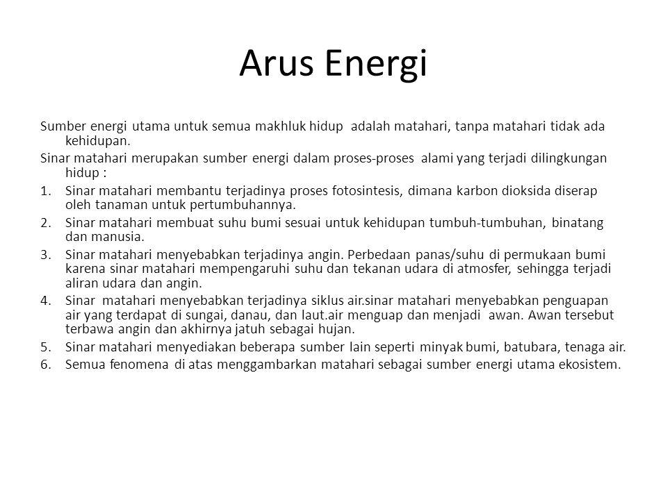 Arus Energi Sumber energi utama untuk semua makhluk hidup adalah matahari, tanpa matahari tidak ada kehidupan.