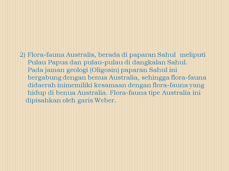 2) Flora-fauna Australis, berada di paparan Sahul meliputi