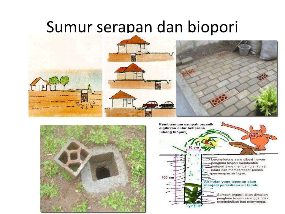Sumur serapan dan biopori