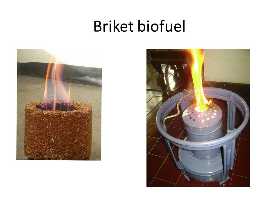 Briket biofuel