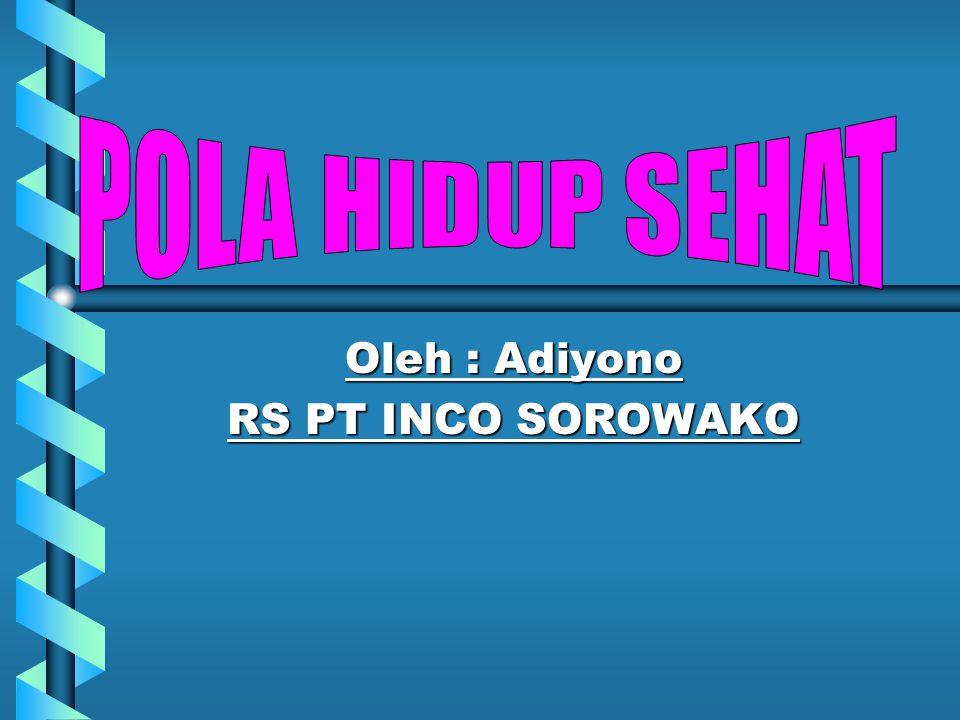 Oleh : Adiyono RS PT INCO SOROWAKO