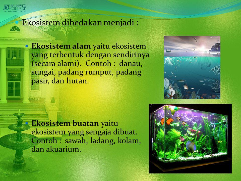 Ekosistem dibedakan menjadi :