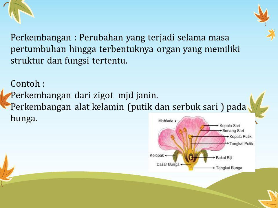 Perkembangan : Perubahan yang terjadi selama masa pertumbuhan hingga terbentuknya organ yang memiliki struktur dan fungsi tertentu.