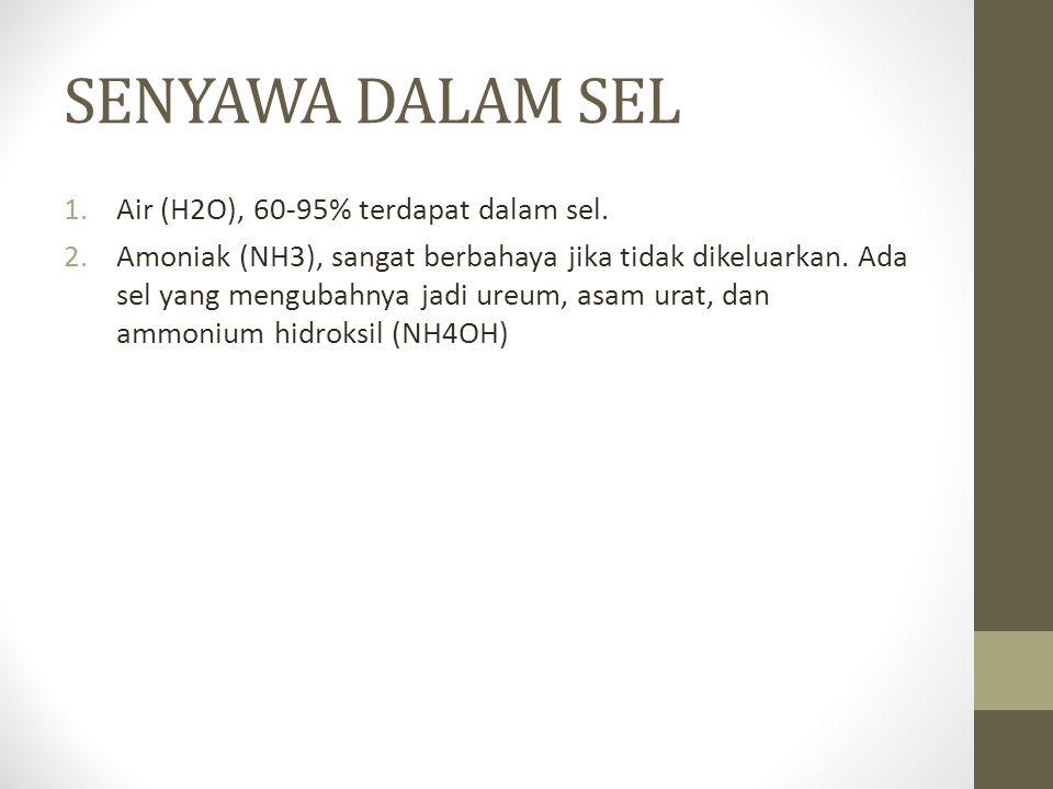 SENYAWA DALAM SEL Air (H2O), 60-95% terdapat dalam sel.