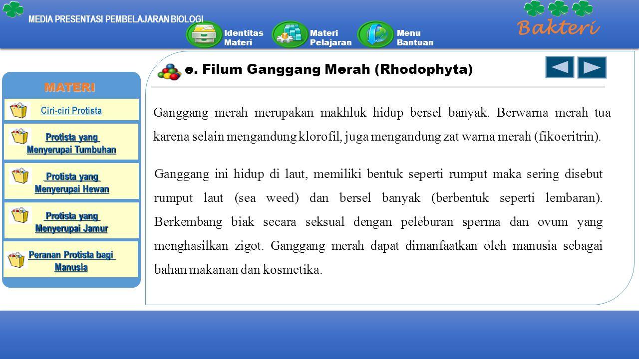 Bakteri e. Filum Ganggang Merah (Rhodophyta)