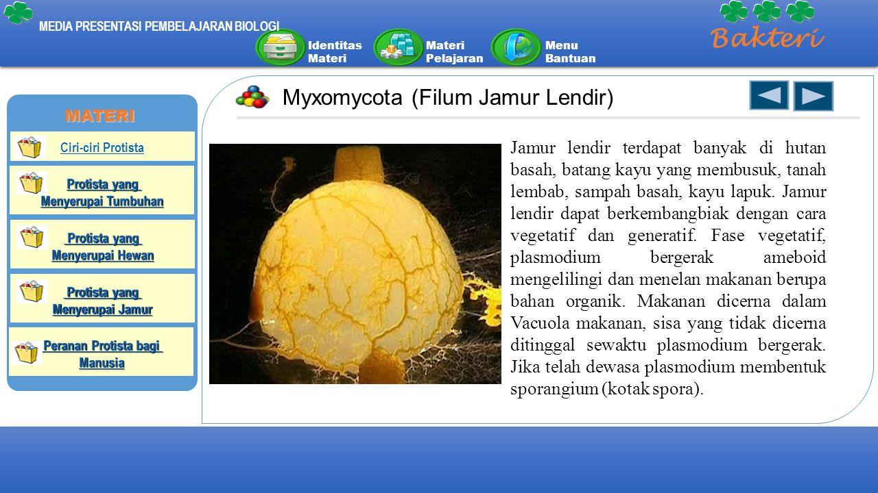 Bakteri Myxomycota (Filum Jamur Lendir)