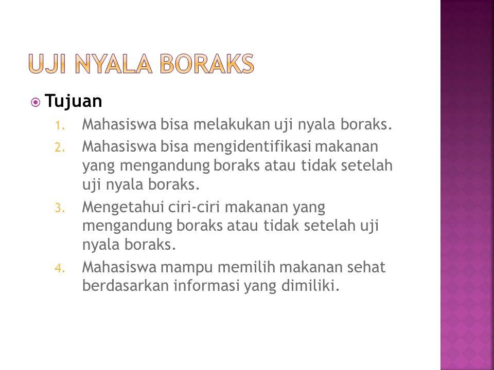 Uji Nyala Boraks Tujuan Mahasiswa bisa melakukan uji nyala boraks.