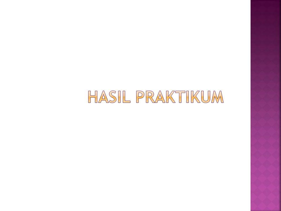 HASIL PRAKTIKUM