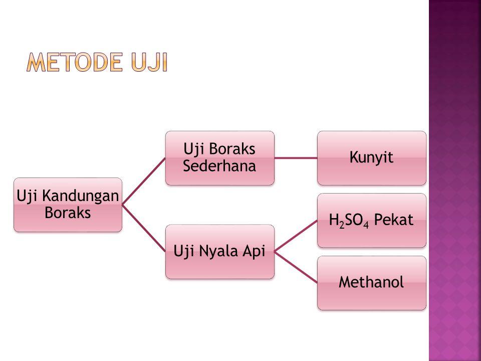 Metode Uji Uji Kandungan Boraks Uji Boraks Sederhana Kunyit