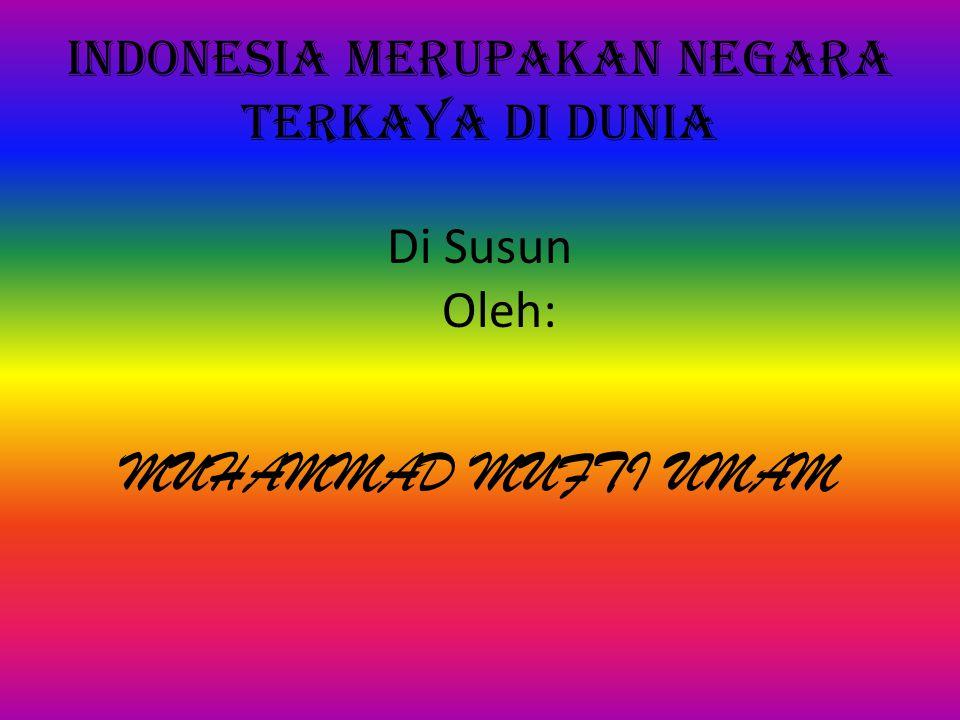 INDONESIA MERUPAKAN NEGARA TERKAYA DI DUNIA