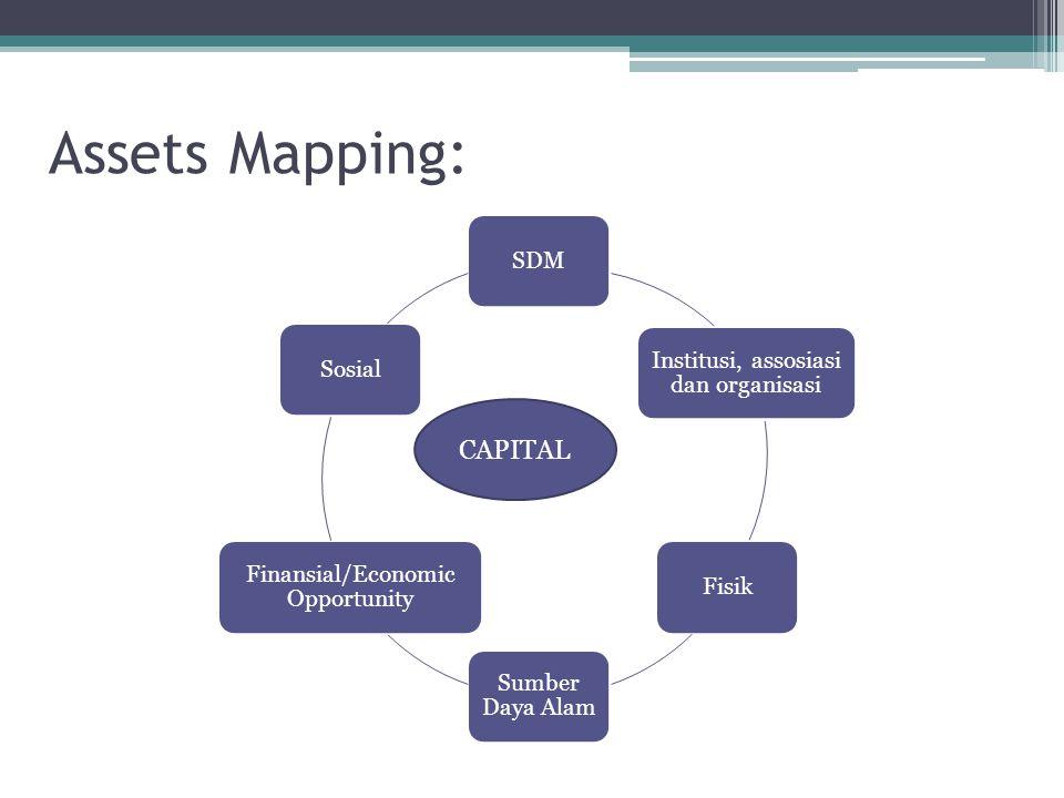 Assets Mapping: CAPITAL SDM Sosial Institusi, assosiasi dan organisasi