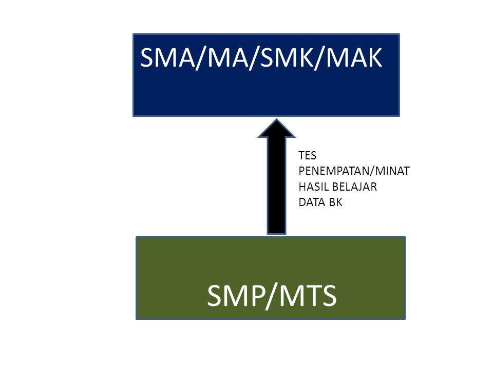 SMP/MTS SMA/MA/SMK/MAK SMA/SMK TES PENEMPATAN/MINAT HASIL BELAJAR