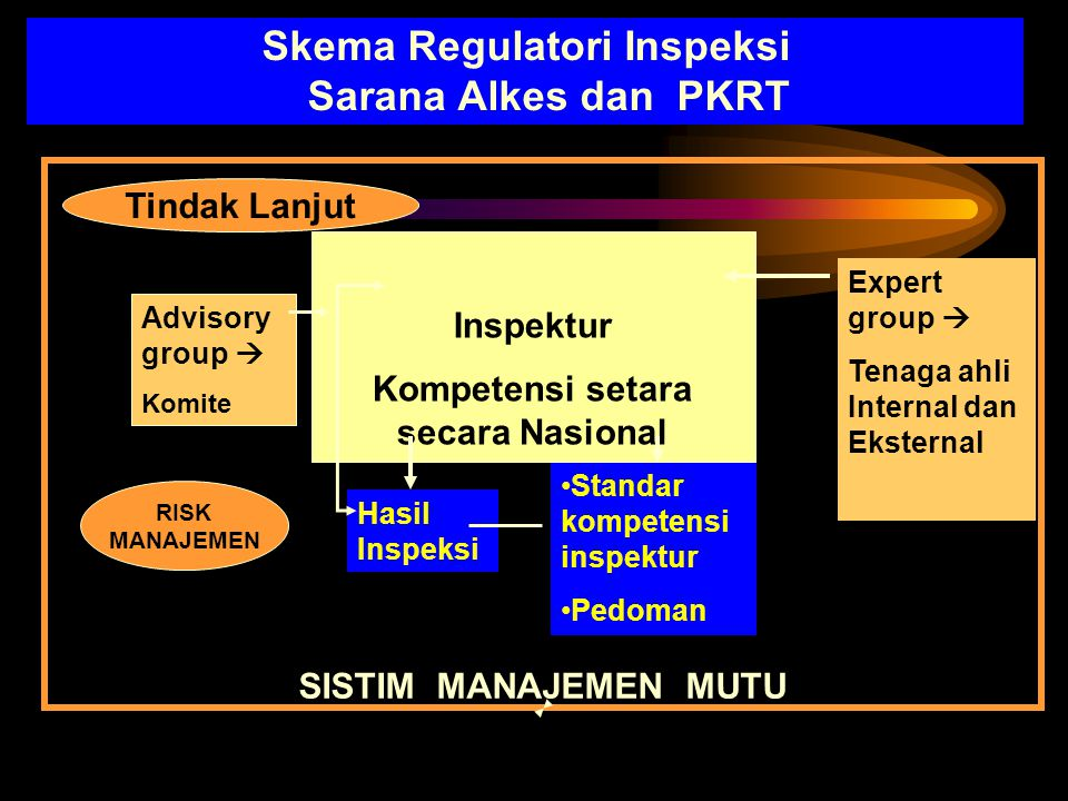 Skema Regulatori Inspeksi Sarana Alkes dan PKRT