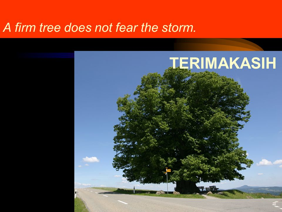 A firm tree does not fear the storm.