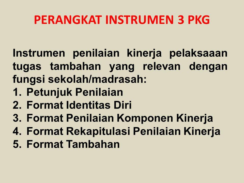 PERANGKAT INSTRUMEN 3 PKG