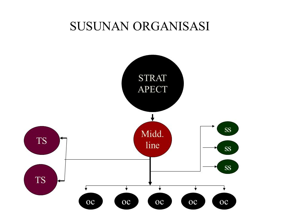 SUSUNAN ORGANISASI STRAT APECT Midd. line ss TS ss ss TS oc oc oc oc