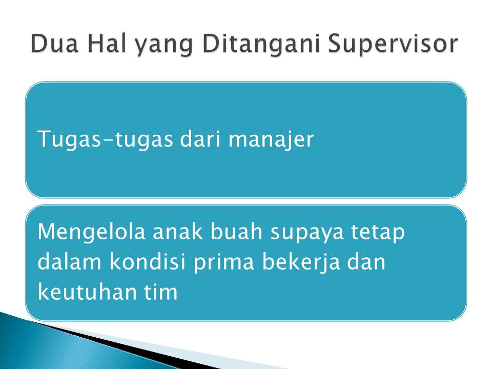 Dua Hal yang Ditangani Supervisor