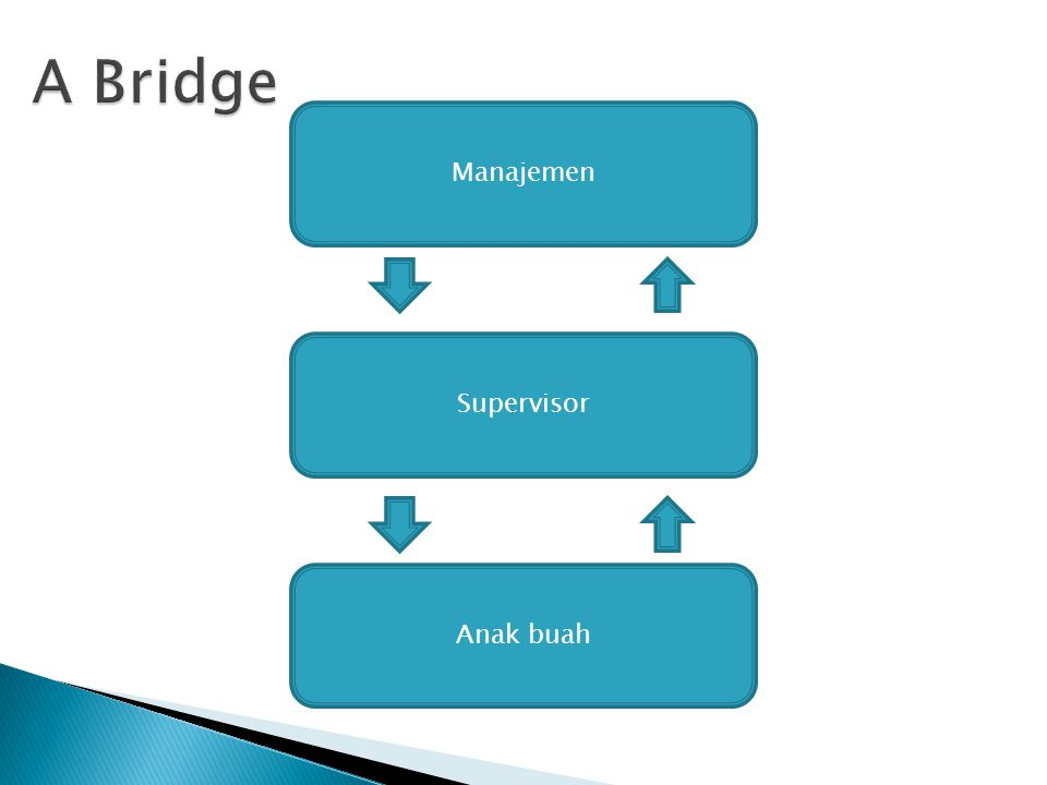 A Bridge Manajemen Supervisor Anak buah
