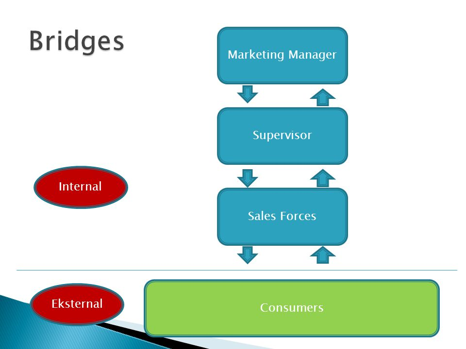 Bridges Marketing Manager Supervisor Internal Sales Forces Consumers