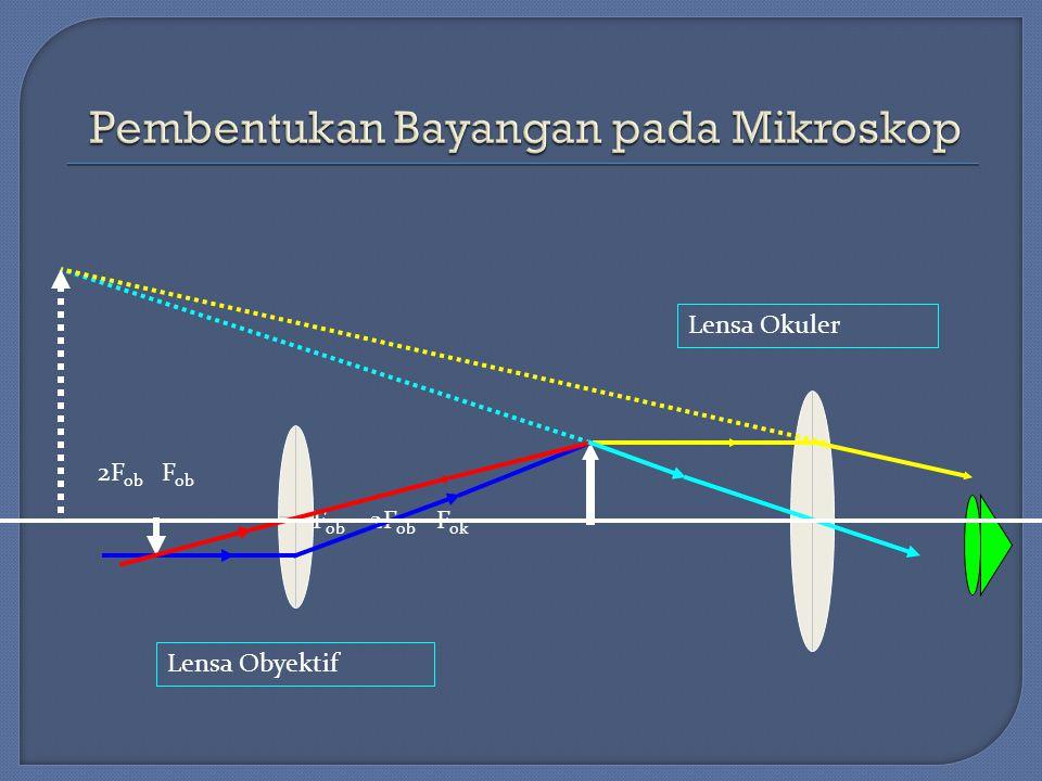 Pembentukan Bayangan pada Mikroskop