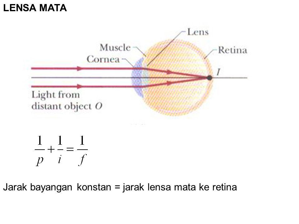 LENSA MATA Jarak bayangan konstan = jarak lensa mata ke retina