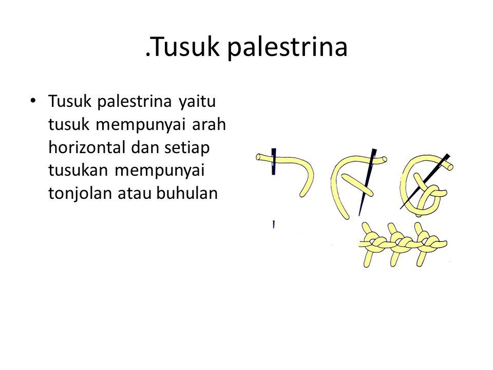 .Tusuk palestrina Tusuk palestrina yaitu tusuk mempunyai arah horizontal dan setiap tusukan mempunyai tonjolan atau buhulan.