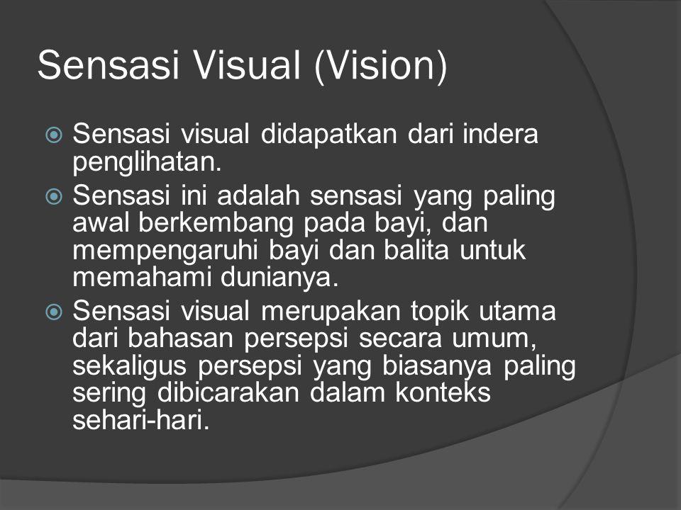 Sensasi Visual (Vision)