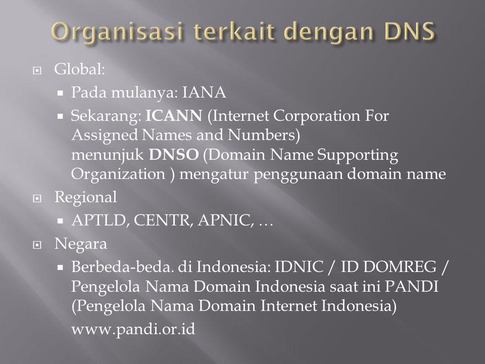 Organisasi terkait dengan DNS