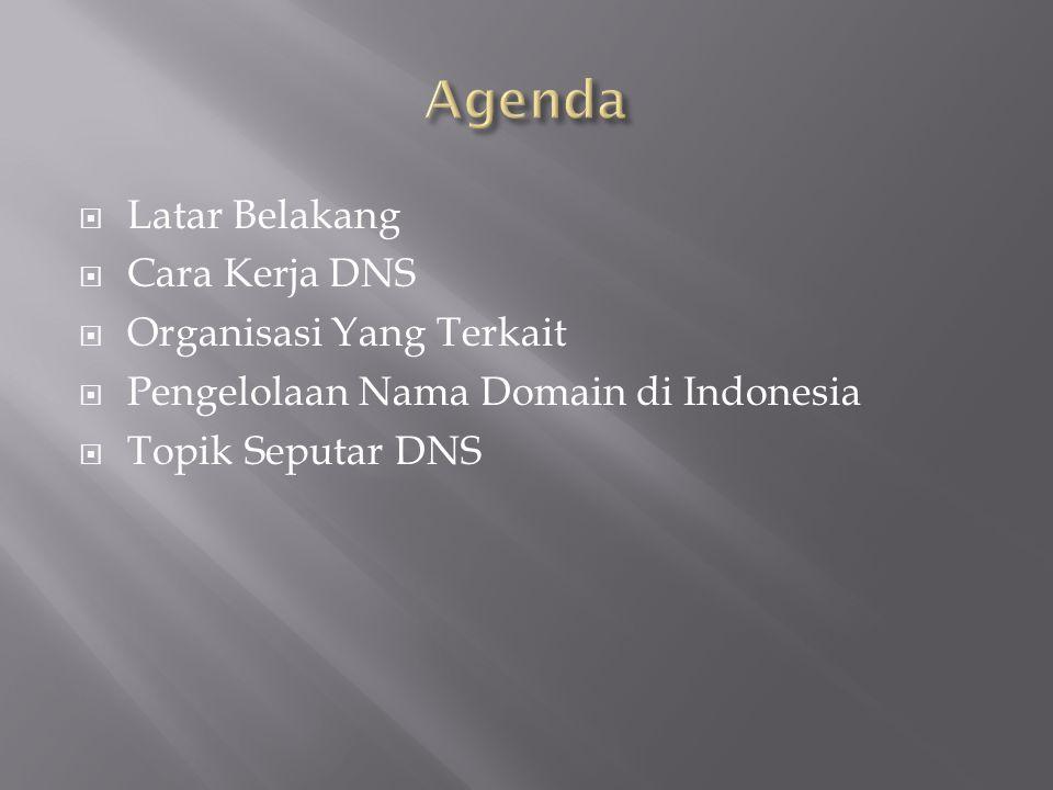 Agenda Latar Belakang Cara Kerja DNS Organisasi Yang Terkait