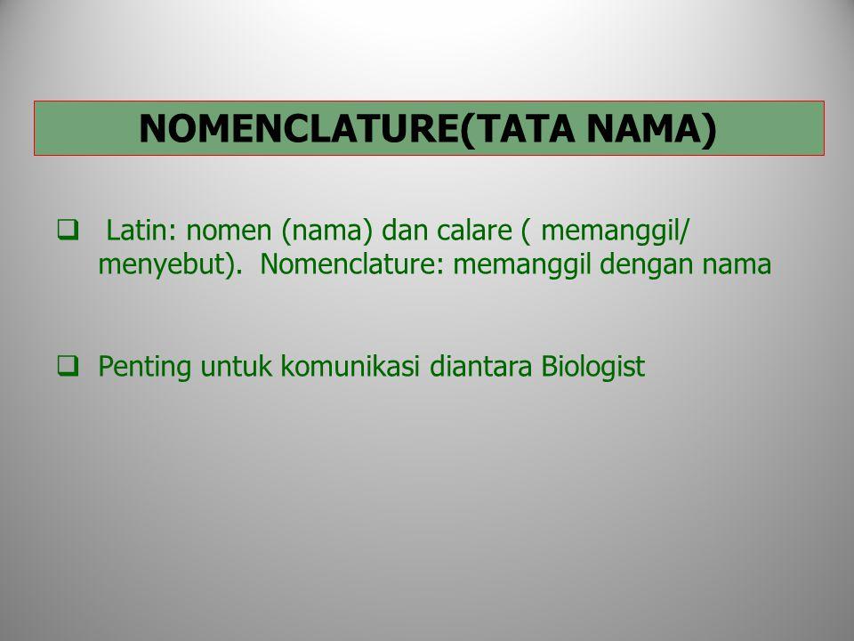 NOMENCLATURE(TATA NAMA)