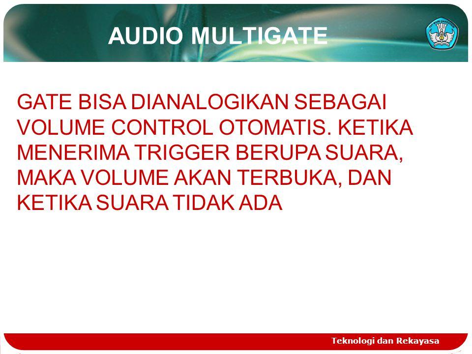 AUDIO MULTIGATE