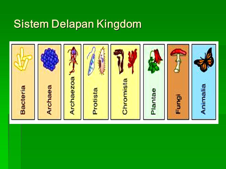 Sistem Delapan Kingdom