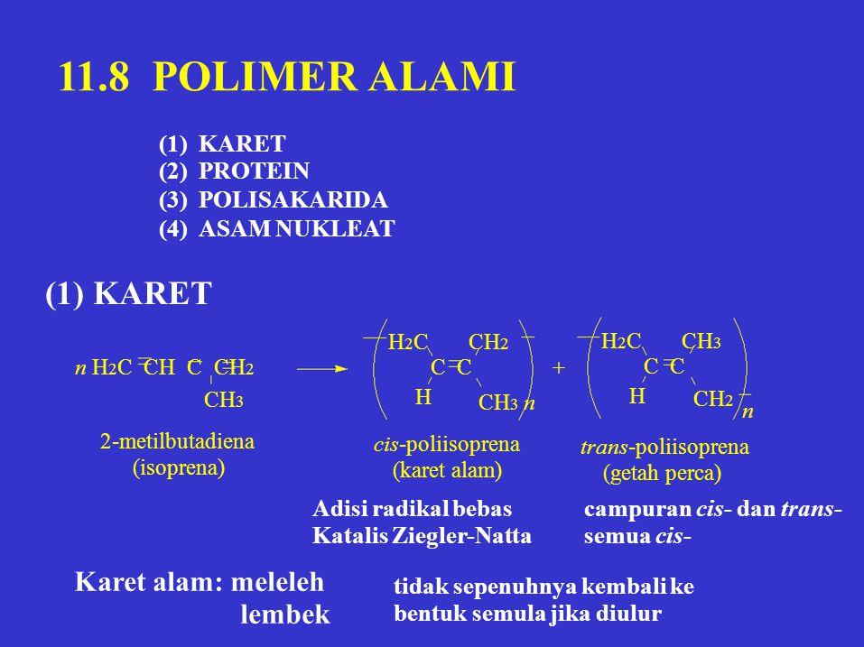 11.8 POLIMER ALAMI (1) KARET Karet alam: meleleh lembek (1) (2) (3)