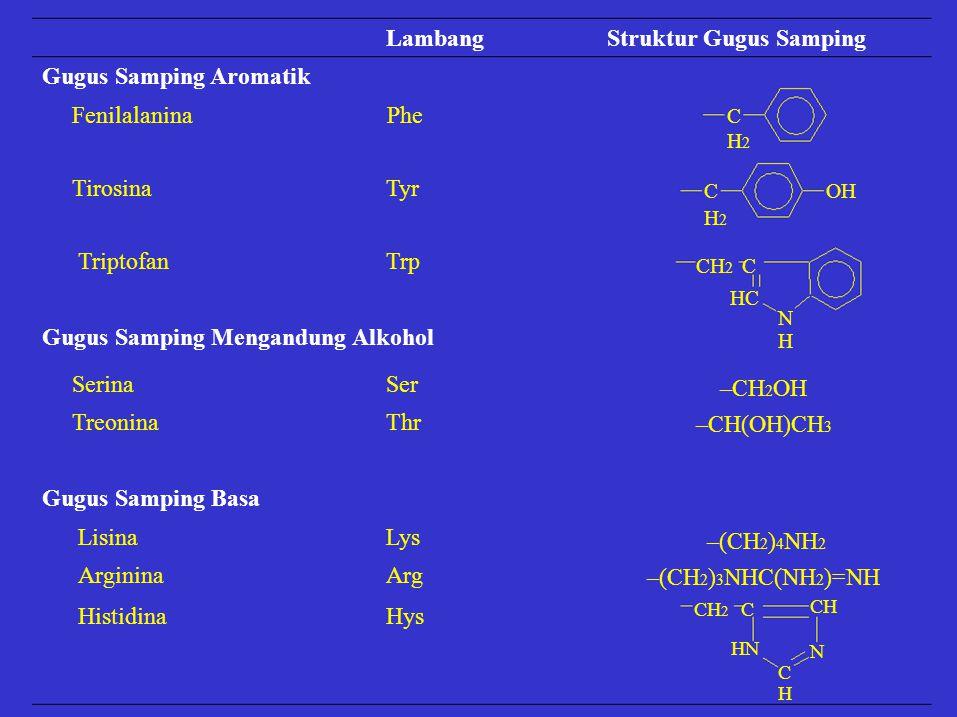 Struktur Gugus Samping