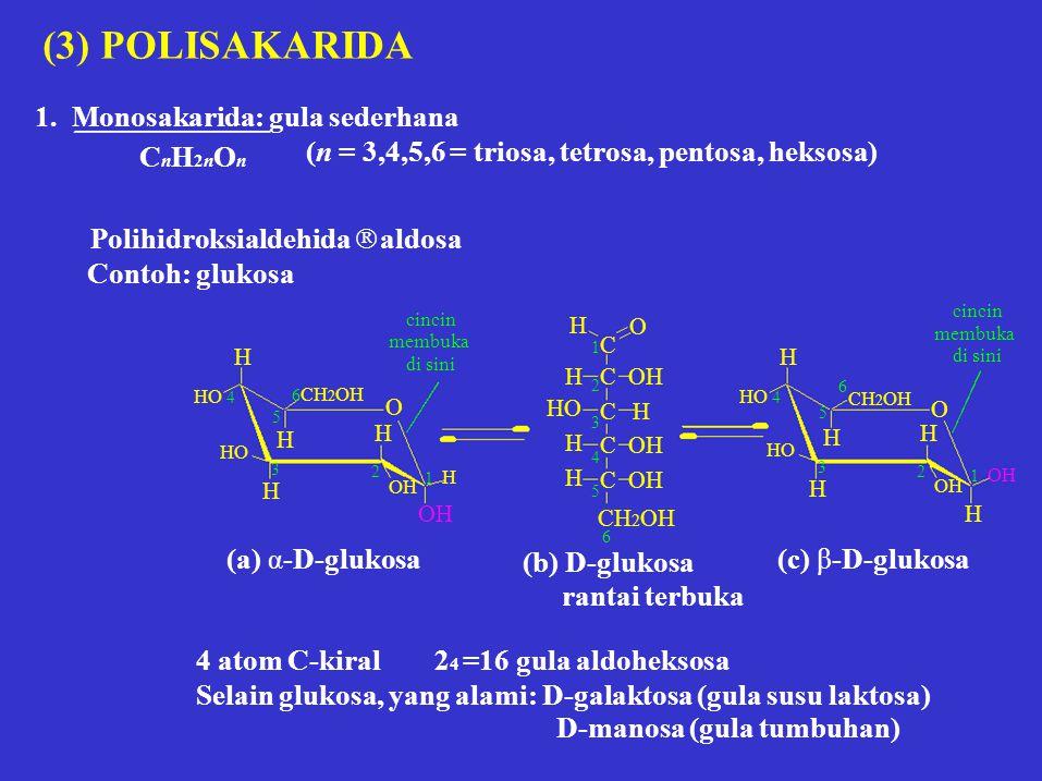 (3) POLISAKARIDA 1. Monosakarida: gula sederhana CnH2nOn