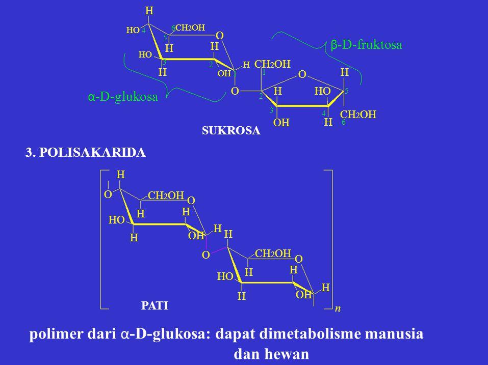 polimer dari α-D-glukosa: dapat dimetabolisme manusia dan hewan