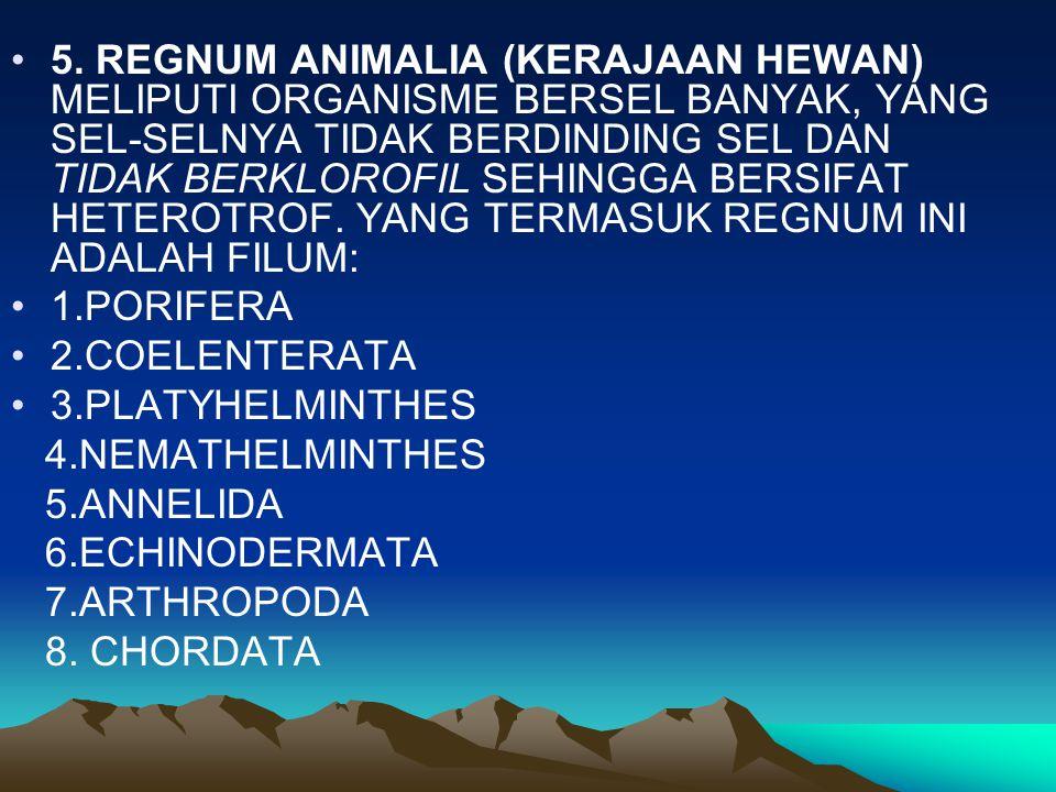 5. REGNUM ANIMALIA (KERAJAAN HEWAN) MELIPUTI ORGANISME BERSEL BANYAK, YANG SEL-SELNYA TIDAK BERDINDING SEL DAN TIDAK BERKLOROFIL SEHINGGA BERSIFAT HETEROTROF. YANG TERMASUK REGNUM INI ADALAH FILUM: